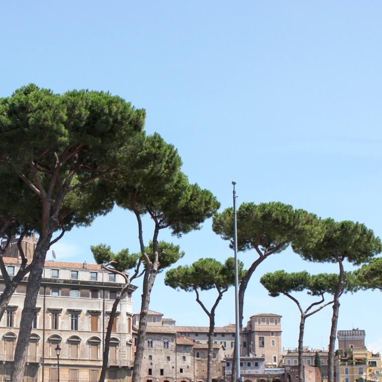 Rome, Italy - 10