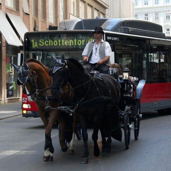 Wien, Austria 3