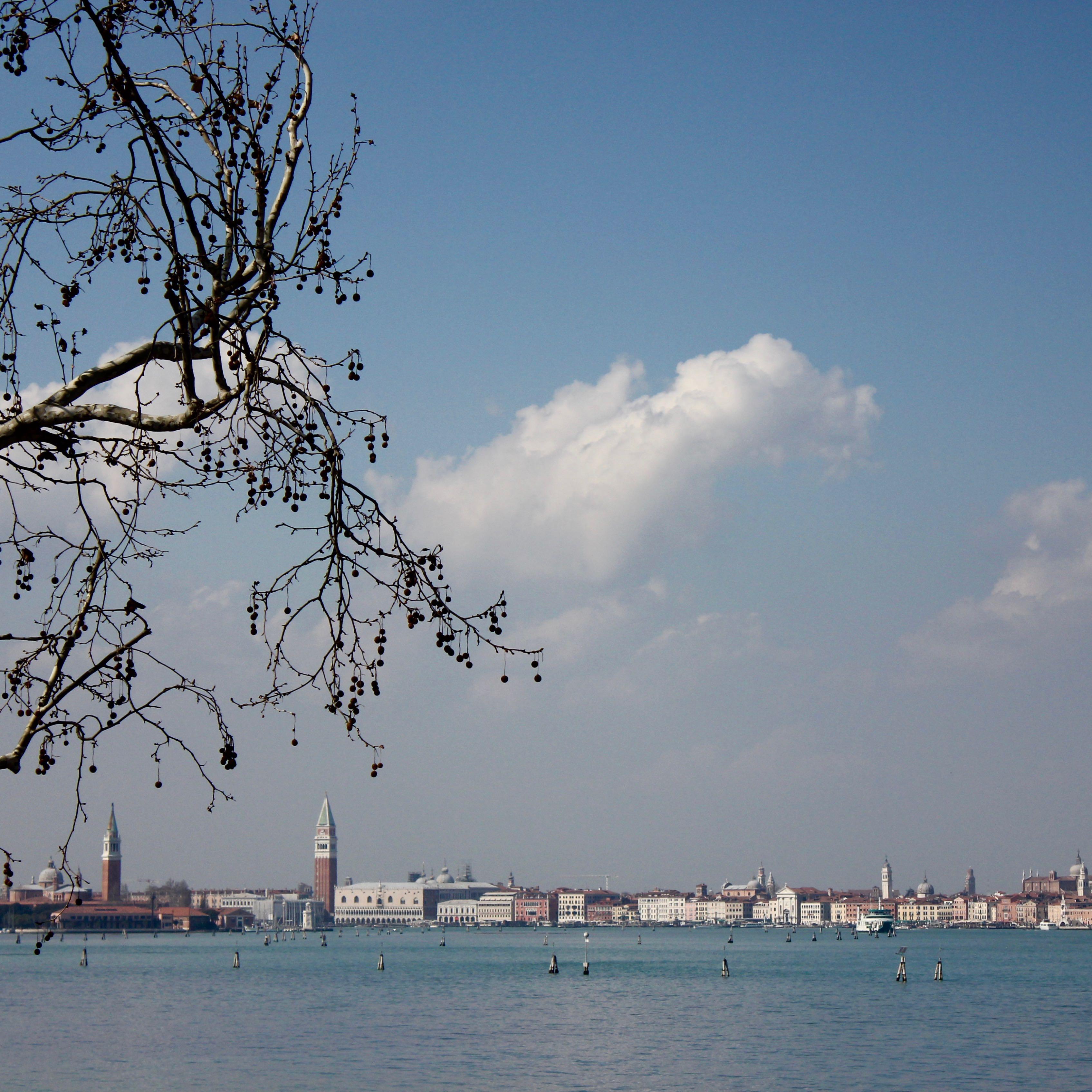 Venezia, Italy10