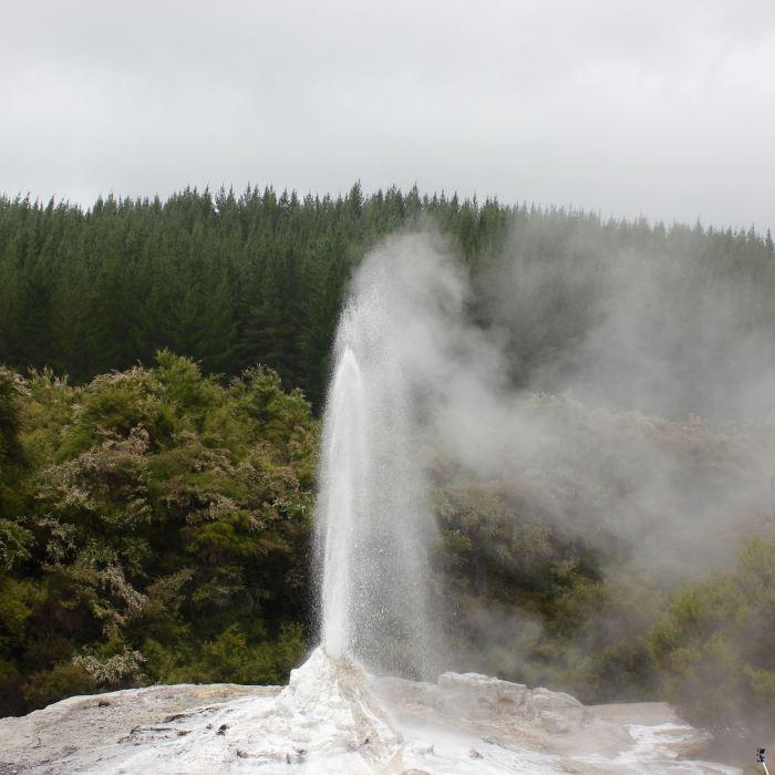 Rotorua, New Zealand 1