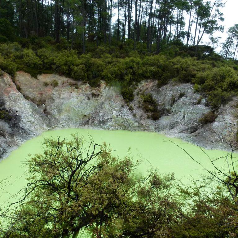 Rotorua, New Zealand 15