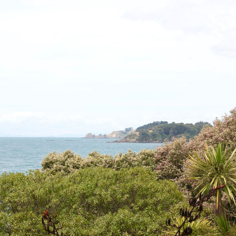 Waiheke, New Zealand 10