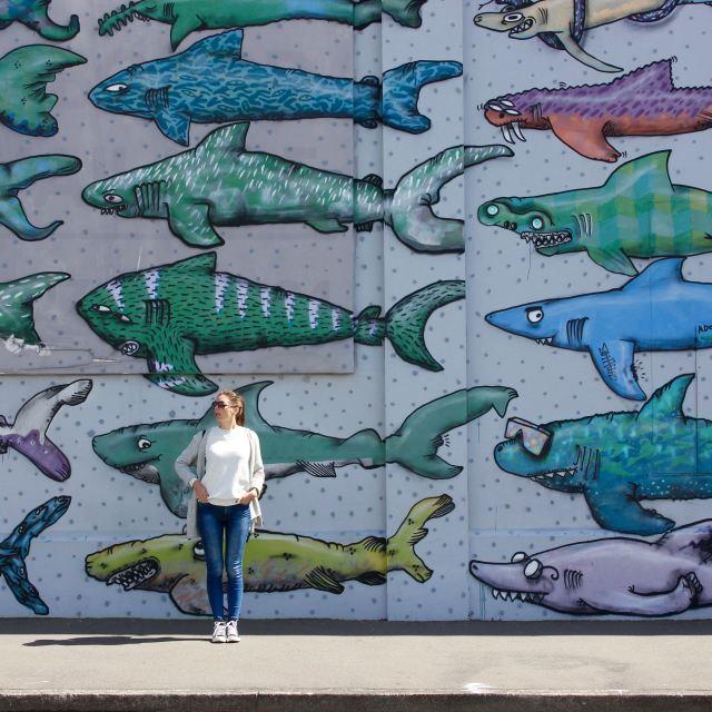Wellington, New Zealand 4