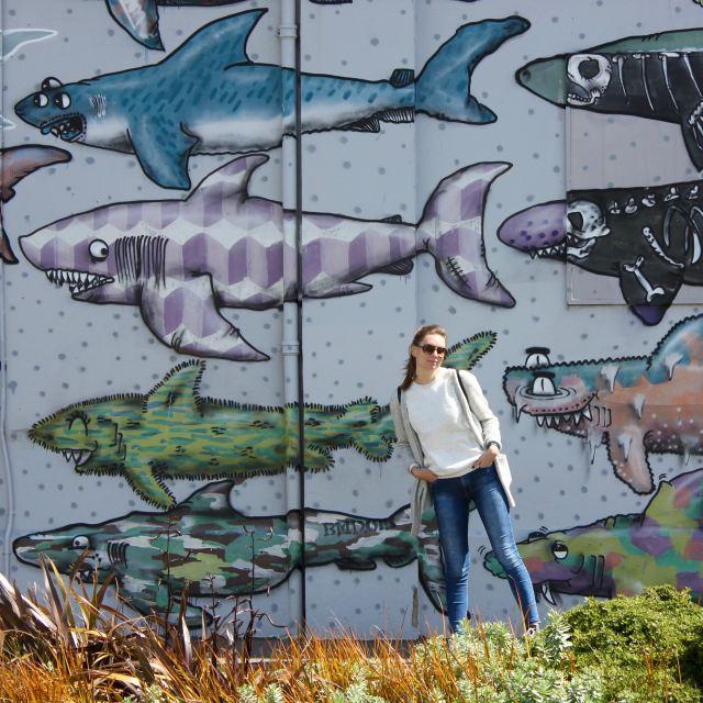 Wellington, New Zealand 6