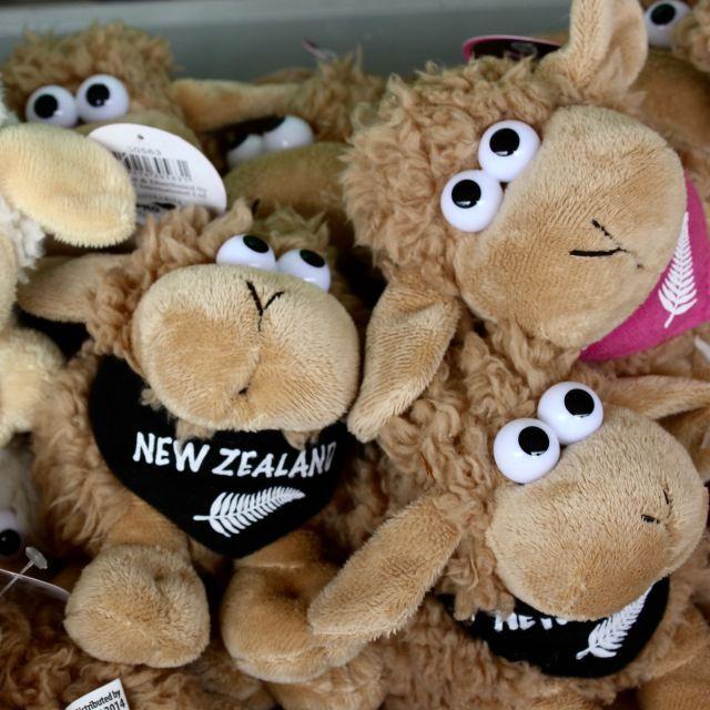 Christchurch, New Zealand 21