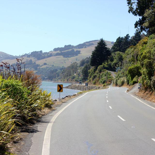Dunedin, New Zealand 10