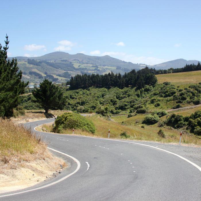 Dunedin, New Zealand 14