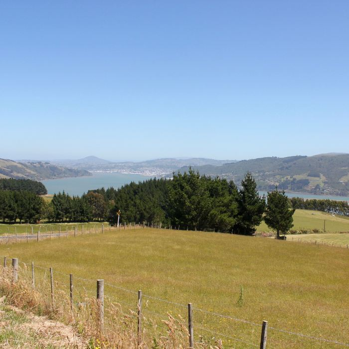 Dunedin, New Zealand 17