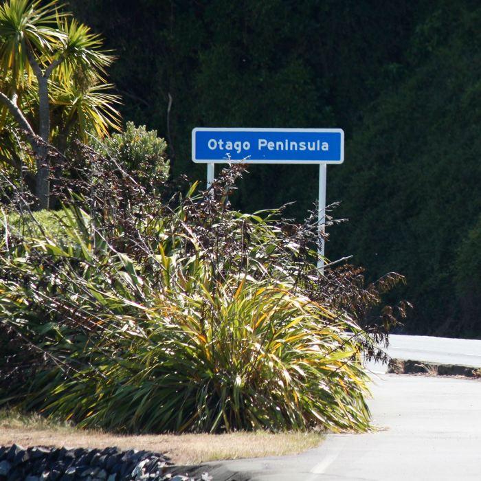 Dunedin, New Zealand 6