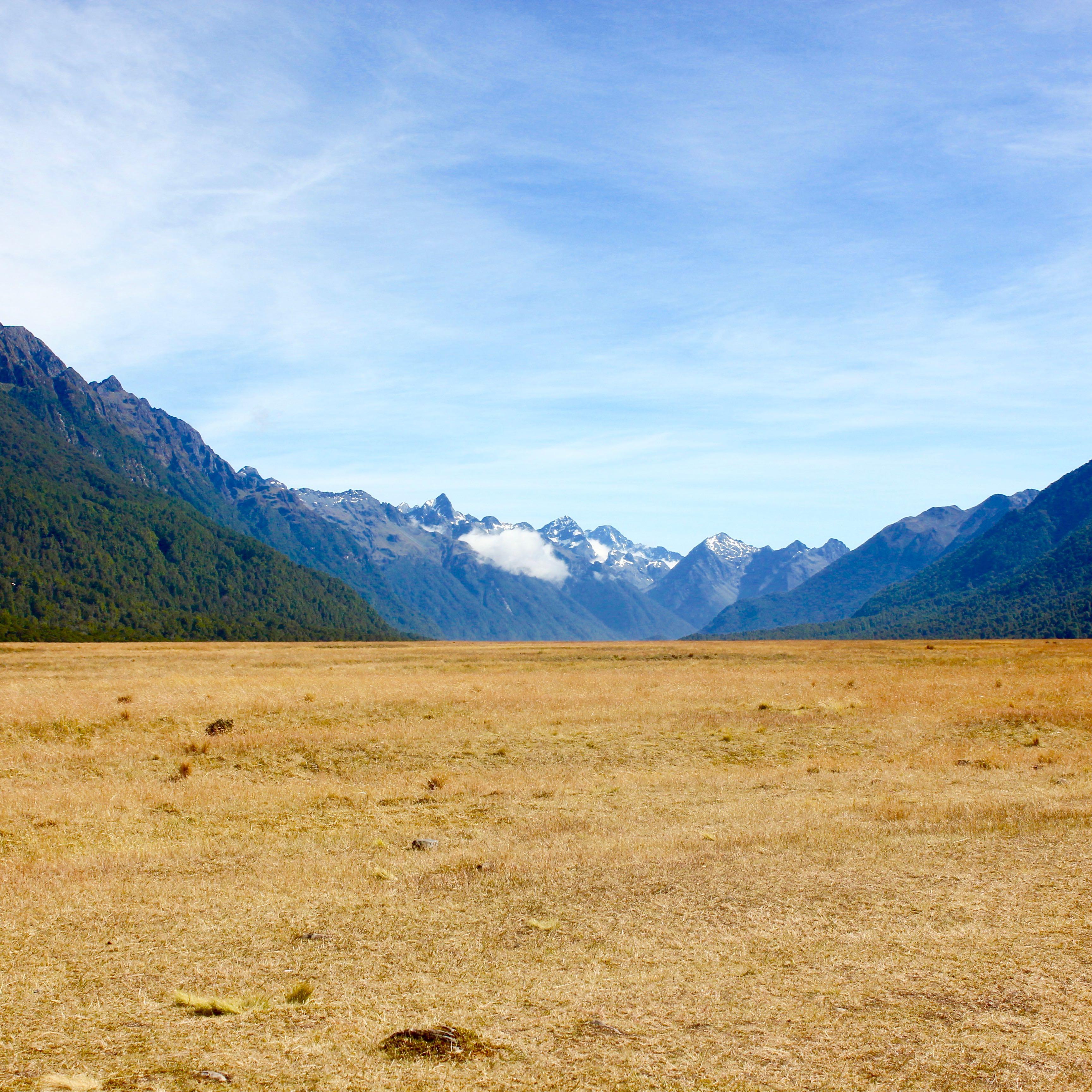 Milford Sound, New Zealand 1