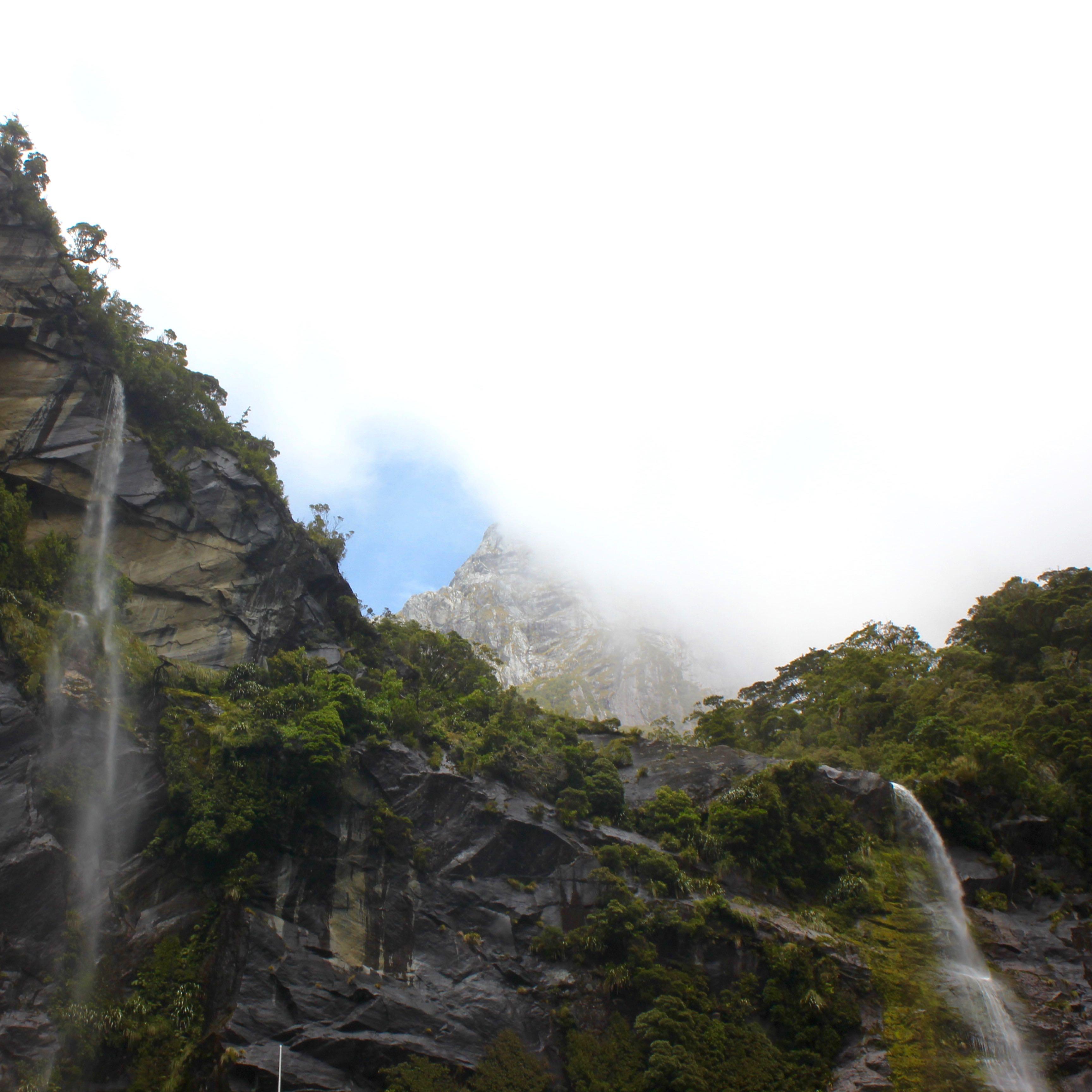 Milford Sound, New Zealand 17