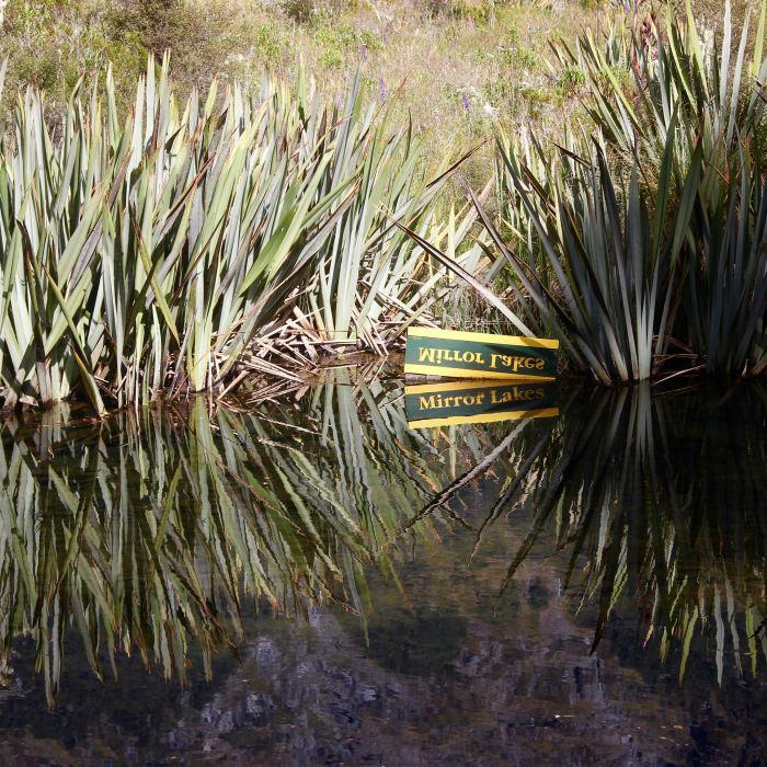 Milford Sound, New Zealand 4