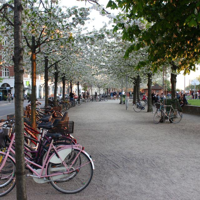 Copenhagen, Denmark 7