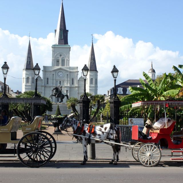 New Orleans 33