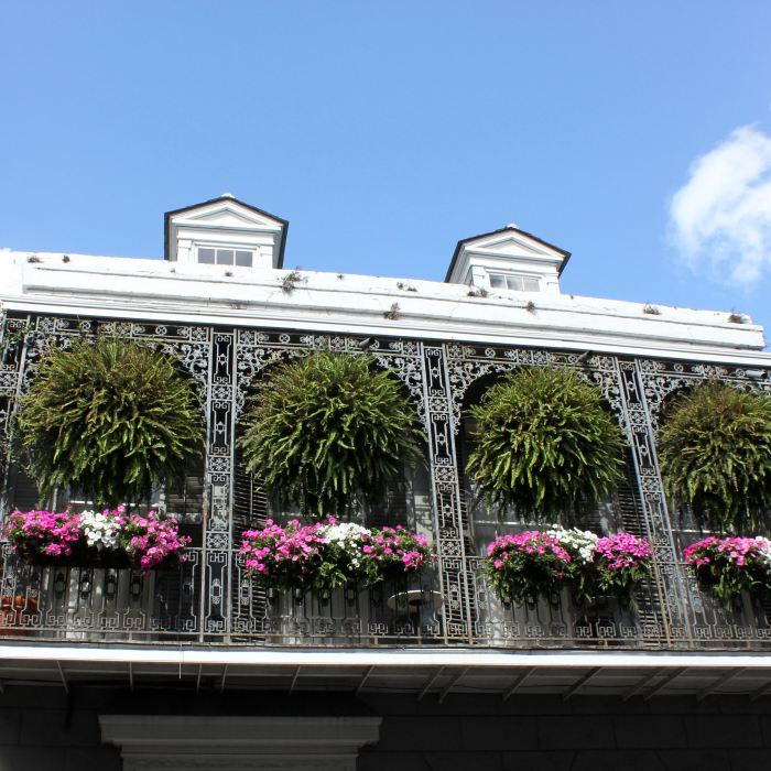 New Orleans 9