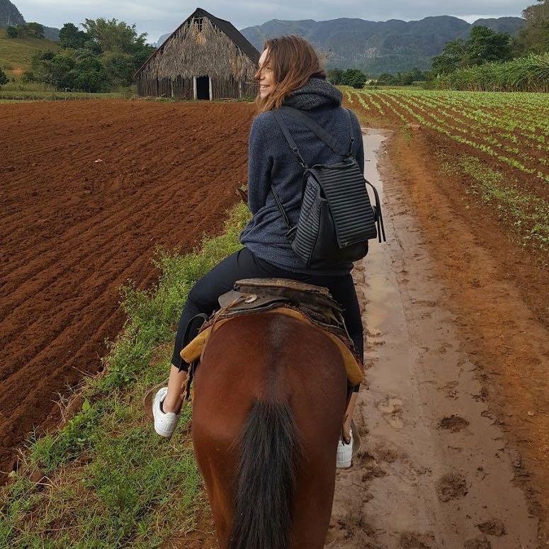 vinales, Cuba horse riding