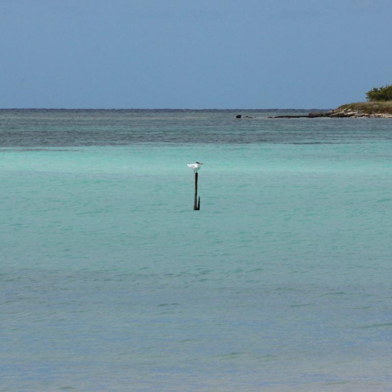 trinidad-5