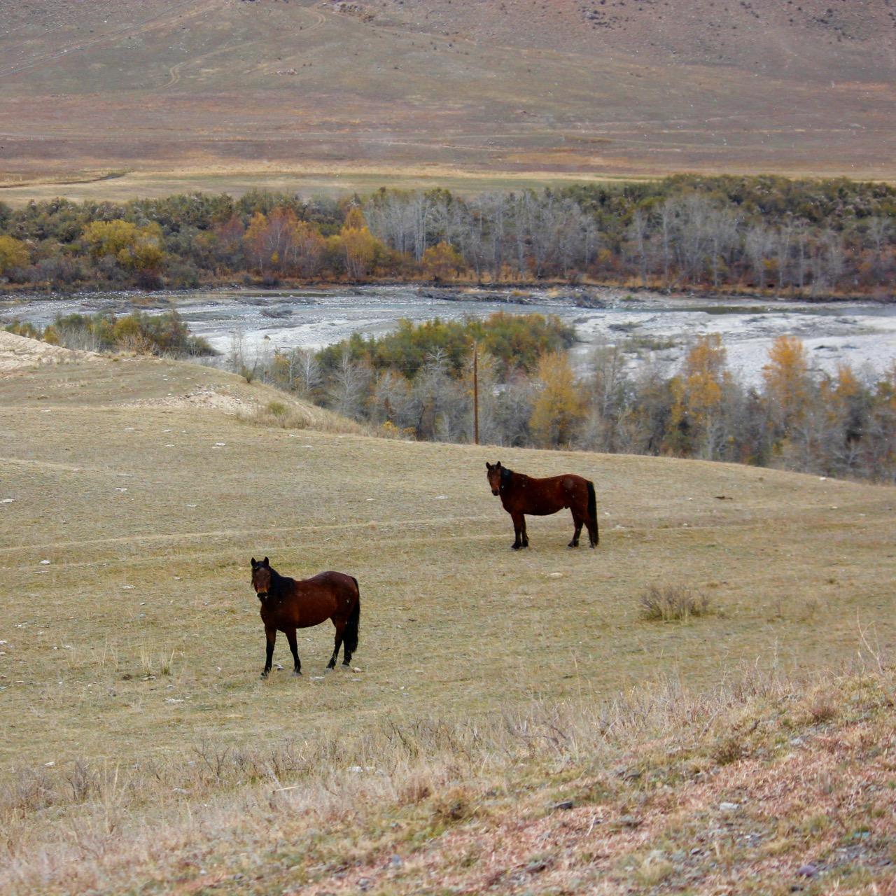 Kolsai Lakes, Kazakhstan - 23