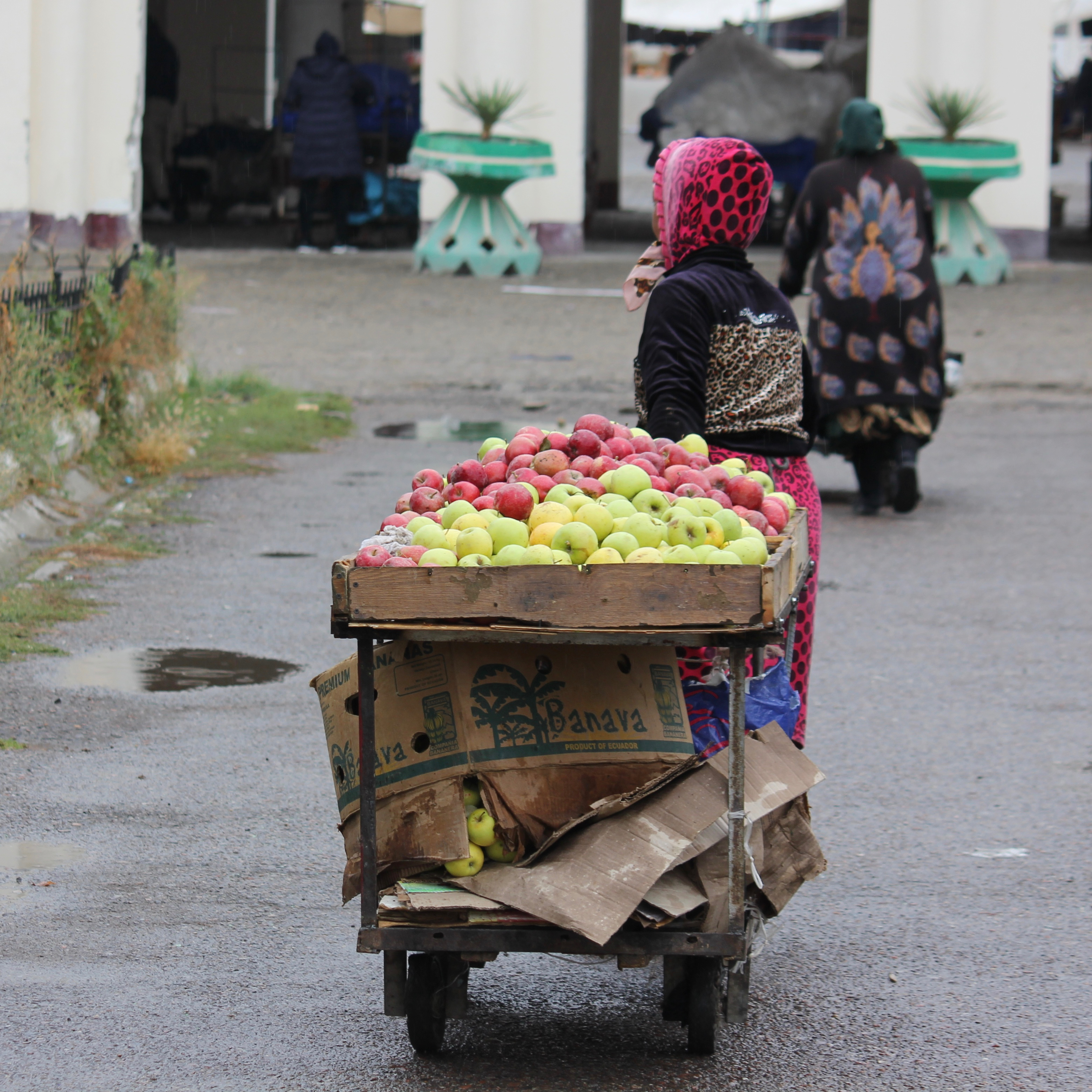 tashkent, uzbekistan - 8